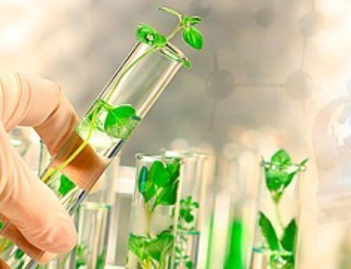 Parlamentares defendem mais recursos para a pesquisa agropecuária