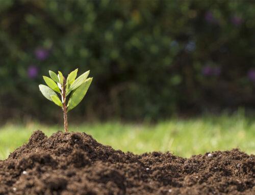 Agricultura de Precisão: Irrigação 4.0
