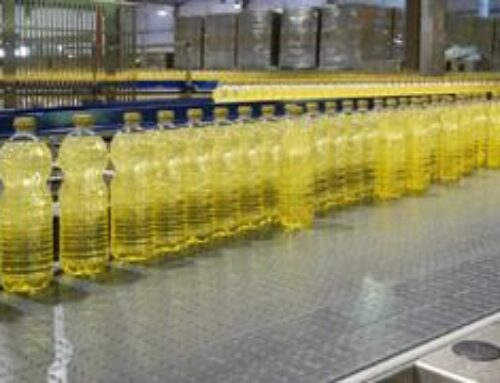Soja: em um ano, valorização do óleo de soja atinge 75%