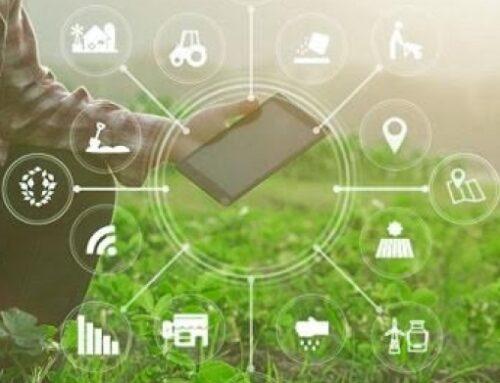 Secretaria da Agricultura de SP vai entregar 150 soluções tecnológicas até 2022